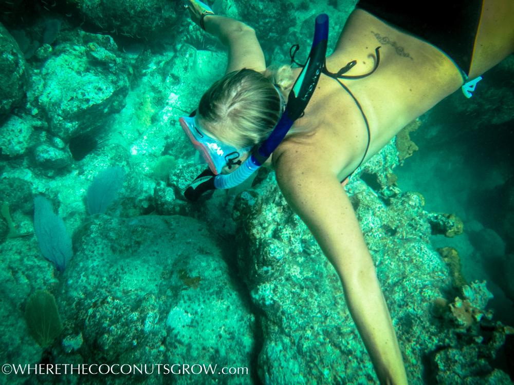 vg snorkeling-19