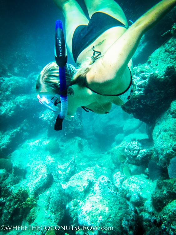 vg snorkeling-20