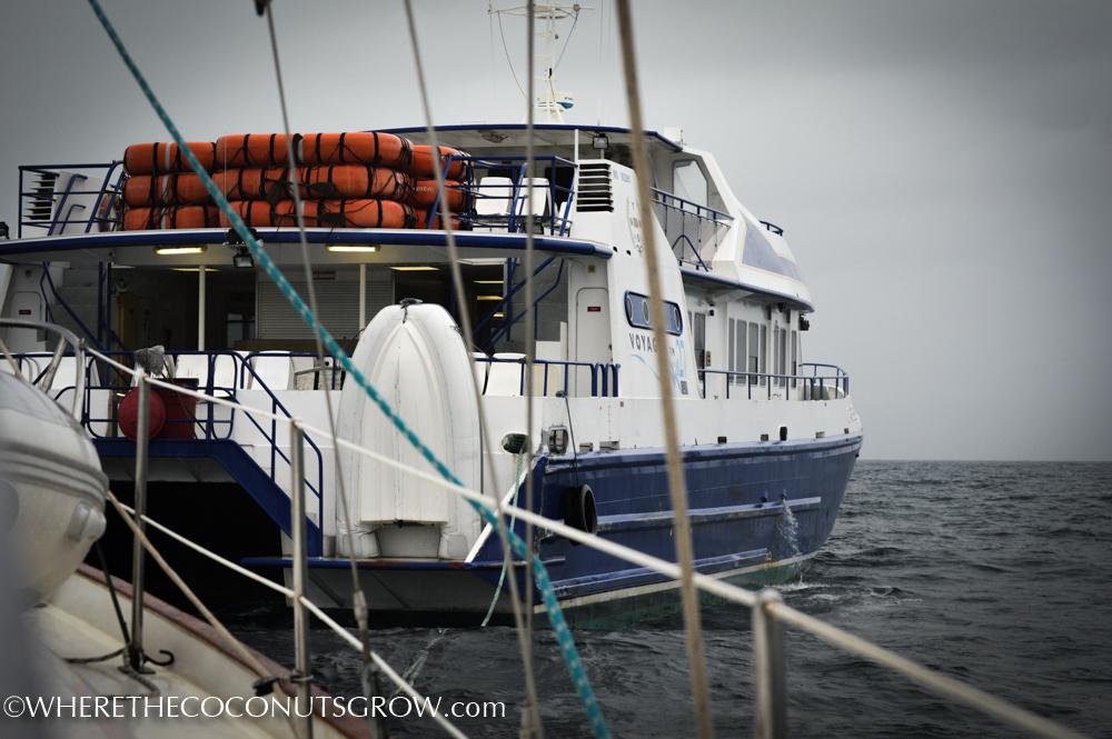 ferry-5