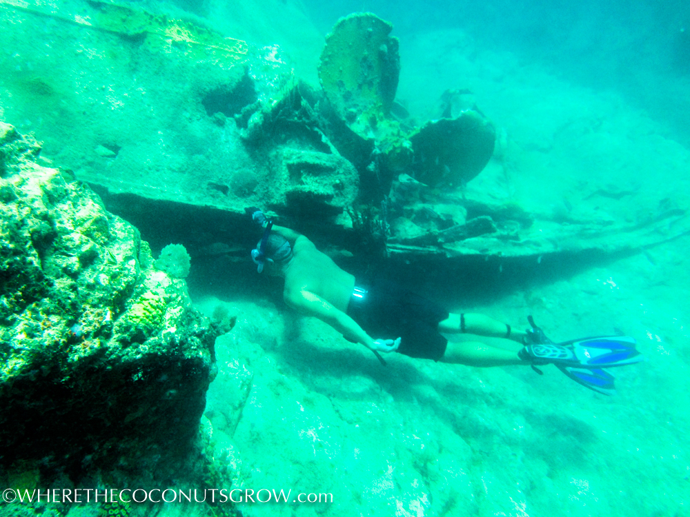 st kitts wreck-10