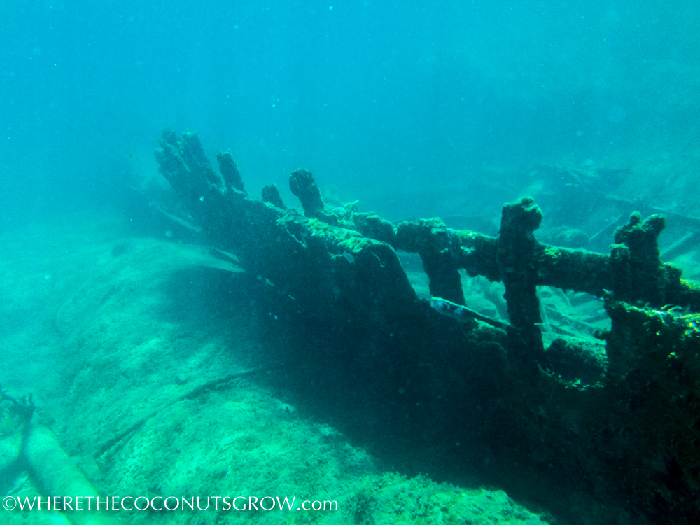 st kitts wreck-28