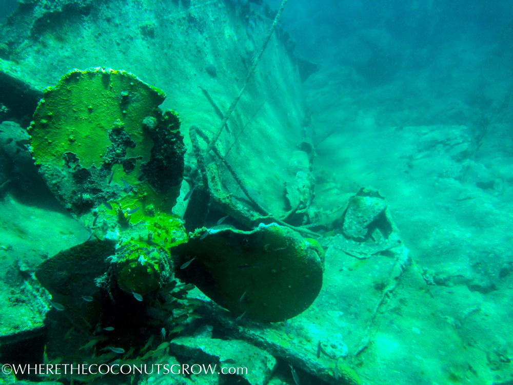 st kitts wreck-31