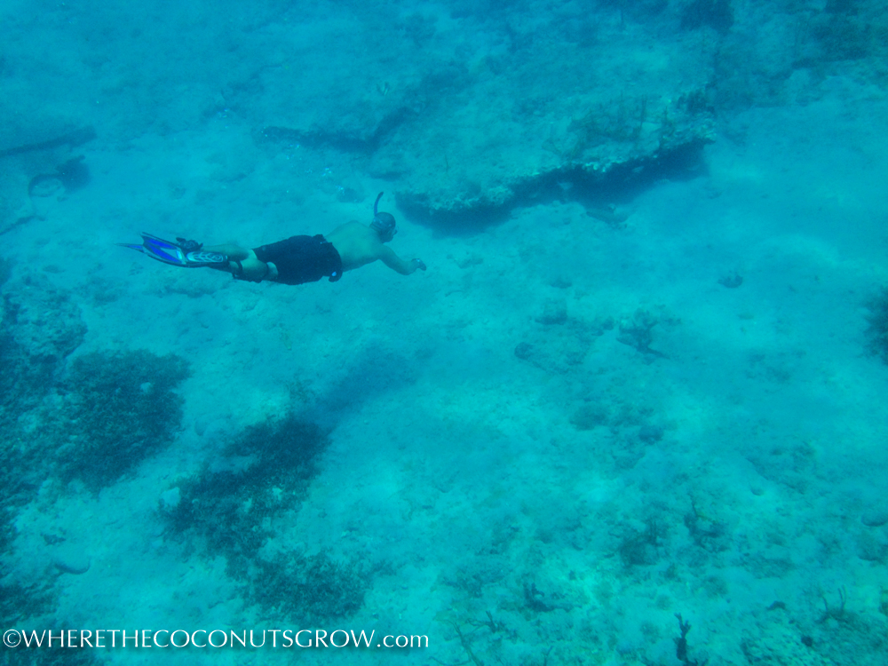st kitts wreck-32