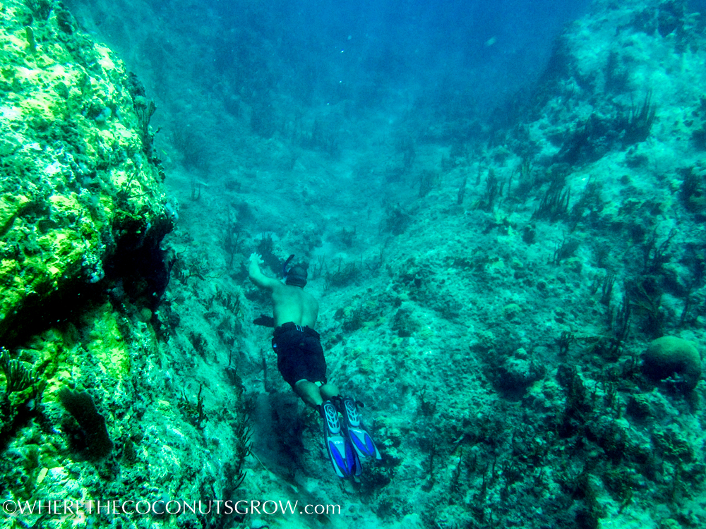 st kitts wreck-7