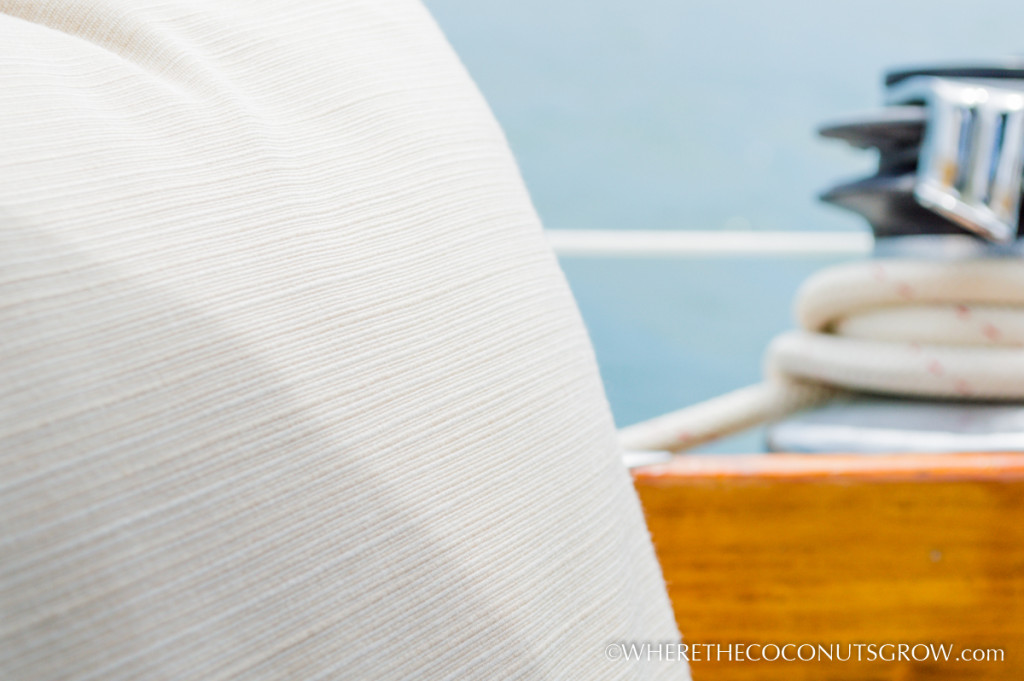 SAILRITE pillows-36