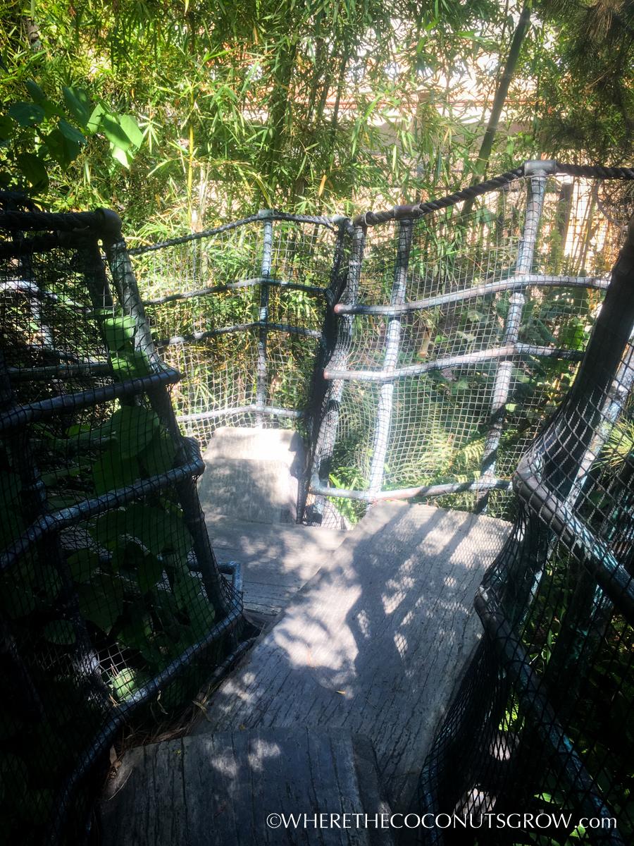 wild-animal-park-24