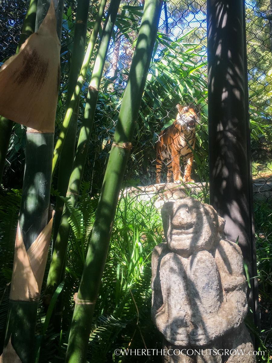 wild-animal-park-27
